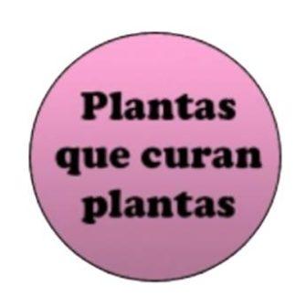 Plantas que curan plantas